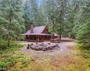 81 Silver Springs USFS, Greenwater image