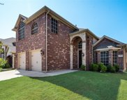 9337 Velvet Cactus Drive, Fort Worth image
