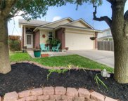 14804 Hyson Xing, Pflugerville image