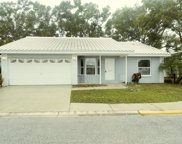 10698 Rosewood Court N Unit 106998, Pinellas Park image