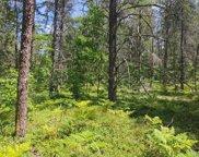 Camp Road Unit Parcel 4, Ocqueoc image