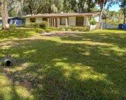 6115 N Falkenburg Road, Tampa image