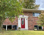 10138 Glenfield, St Louis image
