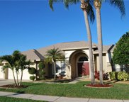 798 Belted Kingfisher Drive N, Palm Harbor image