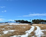 8542 Sanctuary Pine Drive, Colorado Springs image