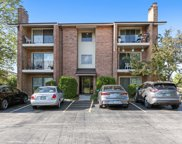 9934 Treetop Drive Unit 2W, Orland Park image