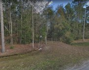 116 River Shores Road, Green Cove Springs image