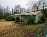 8332 Mill Creek Road, Dora image