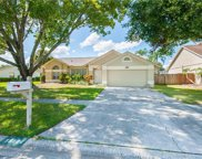 15104 Redvale Drive, Tampa image