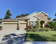 510 Morgan Wood Drive, Deland image