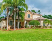 926 Sweetgum Valley Place, Lake Mary image