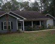10422 WILDWOOD DR., Live Oak image