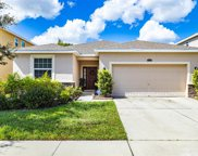 11621 Storywood Drive, Riverview image