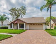 14938 Redcliff Drive, Tampa image