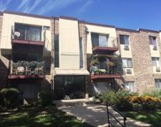 1461 North Winslowe Drive Unit 103, Palatine image