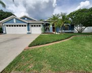 4510 Gentrice Drive, Valrico image