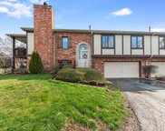 9813 Treetop Drive, Orland Park image
