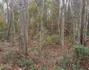 TBD Martin Luther King Rd., Pawleys Island image