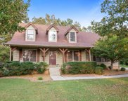 7316 Cox Run Dr, Fairview image