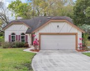 718 Pine Terrace Court, Altamonte Springs image