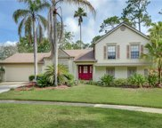 3712 Murray Dale Drive, Valrico image