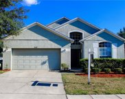 5318 Rabbit Ridge Trail, Orlando image