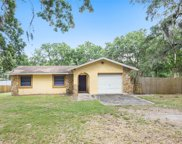 11518 Tucker Road, Riverview image