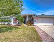 2709 Berryknoll Place, Valrico image