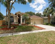 4409 Winding River Drive, Valrico image