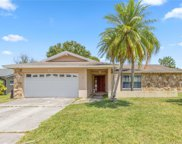 1127 Pelican Place, Safety Harbor image