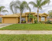 22423 Willow Lakes Drive, Lutz image