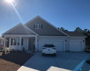 393 Cypress Springs Way, Little River image