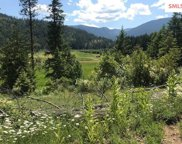 388 Lot B  Mosquito Cr Road, Clark Fork image
