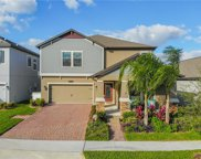 15083 Night Heron Dr, Winter Garden image