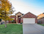 15741 Landing Creek Lane, Fort Worth image