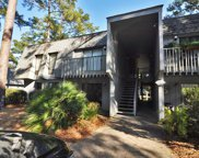 77 Salt Marsh Circle Unit 18-C, Pawleys Island image
