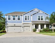 5882 Alenlon Way, Mount Dora image