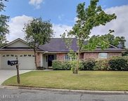 2908 PLUM ORCHARD DR, Orange Park image
