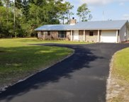 935 LITTLE POND RD, Green Cove Springs image