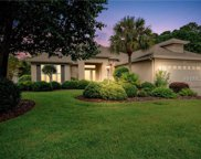 11 Hosell  Court, Bluffton image
