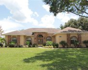 11917 Sugarberry Drive, Riverview image