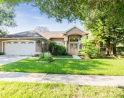 9705 Dunscroft Lane, Tampa image