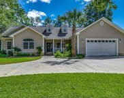 327 Mohican Dr., Georgetown image