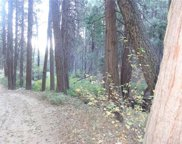 burnt Mill Canyon Road, Cedarpines Park image