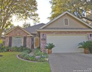 14207 Red Maple Wood, San Antonio image