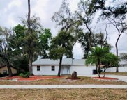 11505 River Country Drive, Riverview image