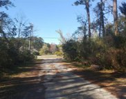 TBD Pipedown Way, Pawleys Island image