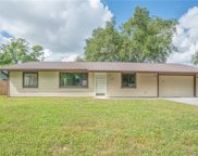 2520 Umbrella Tree Drive, Edgewater image