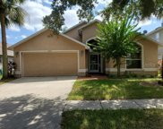10113 Somersby Drive, Riverview image