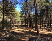 Forest Road 56 -- Unit #Ranch 3, Forest Lakes image